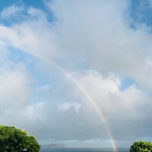 ハワイにも冬がやってきました。ヽ( ̄д ̄&