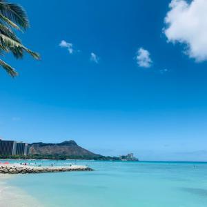 ハワイでペンキ塗り あなたは右脳派 左脳派?