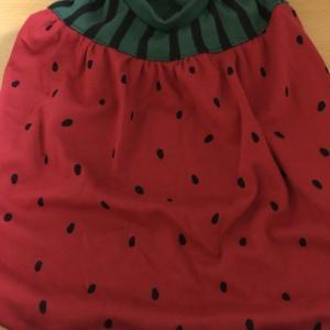 西瓜の洋服