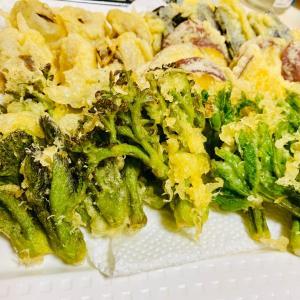 山菜と白米