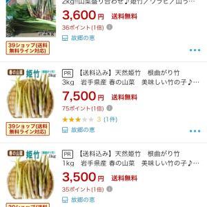 姫竹を採る