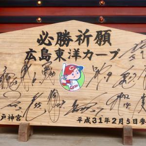 *宮崎県日南市からカープに喝!