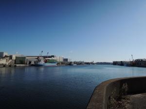 正月の真間川河口