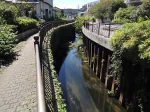 長津川沿いを歩く