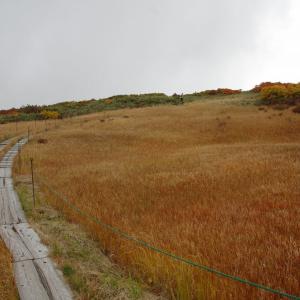 栗駒山と出羽三山(4)―月山弥陀ヶ原