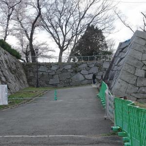 桜の盛岡城跡公園