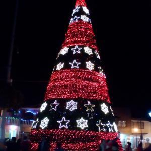 メキシコ地元のクリスマス・ライトアップ