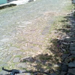 自転車で家探し