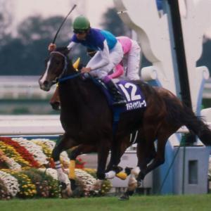 【エリ女杯】G1惜敗の素質馬が始めてG1戴冠する。『非根幹距離』特に1800m重賞馬が強い。