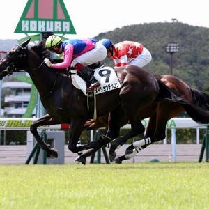 【菊花賞】優勝馬!馬券圏内止まりの馬