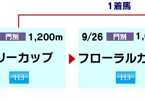 門別【エーデルワイス賞 Jpn3】2歳牝馬三冠レースの最終戦(発走:20:00)