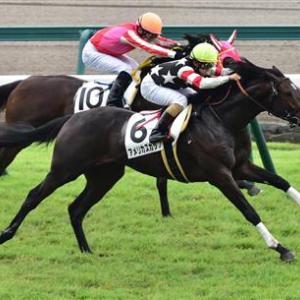 【中京記念】1~3番人気が未勝利・56キロ以上・上がり最速馬・サンデー系【爆アナ】アメリカズカップ
