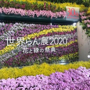 世界洋ラン展2020