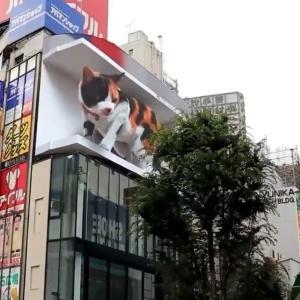 ジブリの新しい広告