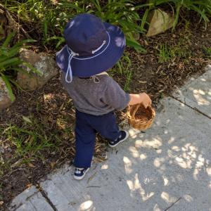 2歳児がお散歩に出かける時、必ず持つもの