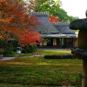 吉城園の紅葉