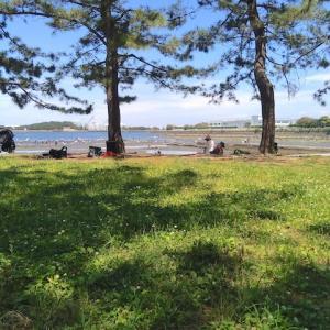 2年ぶりの野島公園の海