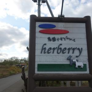 ちょっと贅沢イタリアンランチはヤギのいる農園りすとらんてherberry