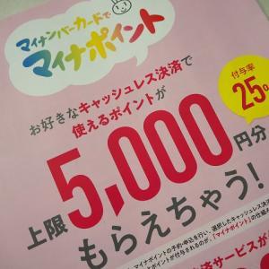 【マイナポイント申し込み完了】5,000円プラスwaonなら2,000円上乗せ