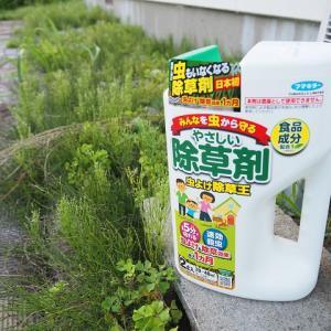 砂利敷の除草に即効・殺虫・虫よけ効果のある除草王を使用してみた感想