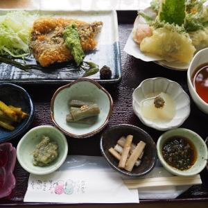 農家レストランの魅力 【清流の森】定食1,000円