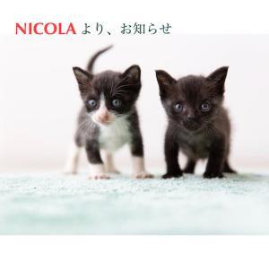 NICOLA 4月は休業します