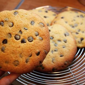 写真屋さんのクッキー、新しくなりました!
