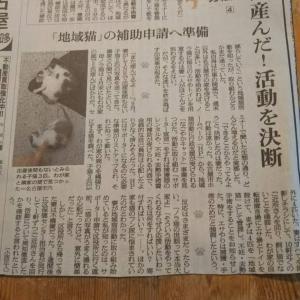 読んで欲しい新聞記事③