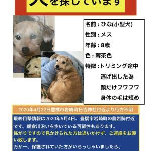 「ノラ猫問題相談会」7月18日再開します。