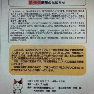 豊川市で勉強会