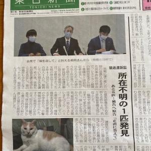 「猫集団里親詐欺裁判」経過報告