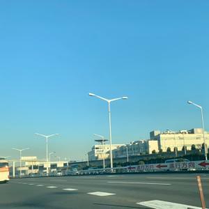 やっちまった羽田空港とタコス