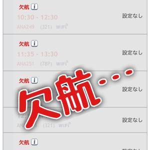 福岡に行けない。。。欠航。台風14号。。。差し入れ。
