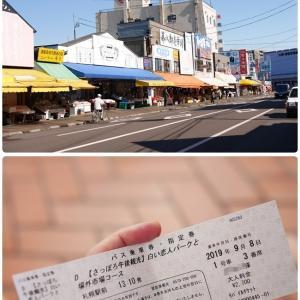 場外市場〜北海道神宮〜白い恋人パーク