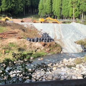 田舎の竹林 トンネル工事の為見る影もなくなっていた