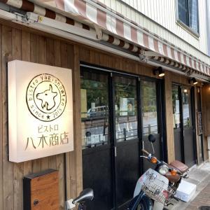 柔らかくて美味しい鶏肉料理でしたよ~ ビストロ八木商店!!