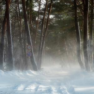 猪苗代湖 しぶき氷「ホワイトアウトな冬ドラ」
