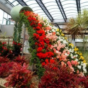 水戸市植物園 「まとめると雨でも楽しいボタニカルガーデン」