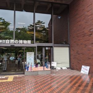 埼玉県立 自然の博物館と武甲温泉 お出かけ日記 埼玉県