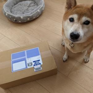 愛車S子さん、タイヤ交換したらプレゼントを貰った