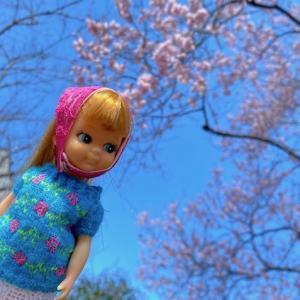 桜も開花〜お花と一緒にドール撮影〜♪