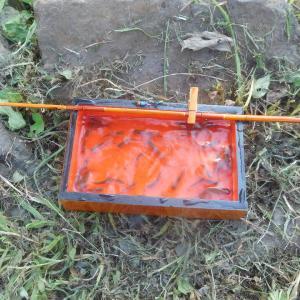 ちょっと小粋なタナゴ釣り