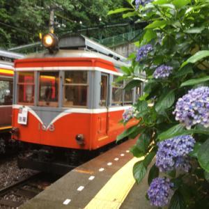 箱根登山鉄道のモハ1とあじさい