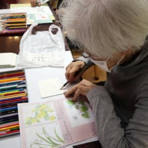 色鉛筆画 ~ 日本の草花彩り ~