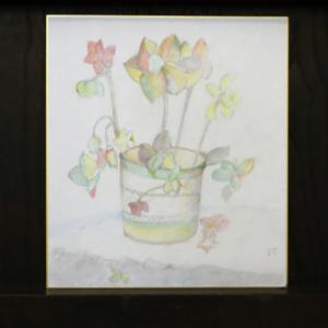 色鉛筆画 ~ フラワー ~