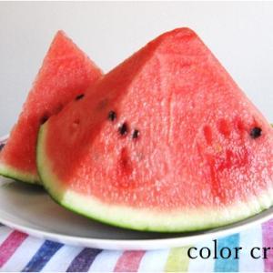 富里スイカ 夏の色を食べて
