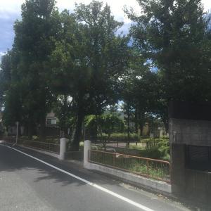 谷原児童公園