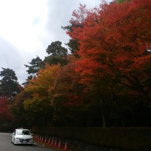 松雲山荘に遠足