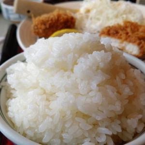 米米、犬犬、猫も米を喰う