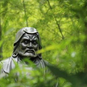 お寺で自然観察